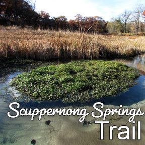 Scuppernong Springs Trail